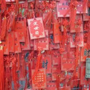 Guest Blogger Jane Affleck Goes to China